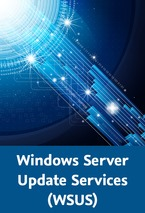 Windows Server Update Services (WSUS)_klein