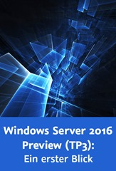 WindowsServer_gross